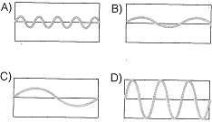 8-sinif-fen-bilimleri-ses-12-optimized