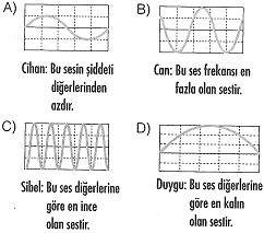 8-sinif-fen-bilimleri-ses-13-optimized