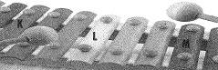 8-sinif-fen-bilimleri-ses-22-optimized