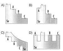 8-sinif-kuvvet-ve-hareket-29-optimized