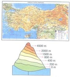 5-sinif-sosyal-bilgiler-haritanin-dili-ve-bolgemizin-yuzey-sekilleri-17-5