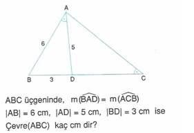 9-sınıf-geometri-benzerlik-ve-dik-ucgen-testleri-43.