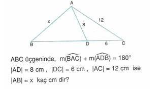 9-sınıf-geometri-benzerlik-ve-dik-ucgen-testleri-54.