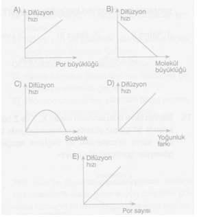 9-Sınıf-Biyoloji-Hucre-Zarindan-Madde-Gecisleri-Testleri 1.