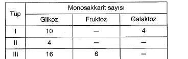 9-sinif-biyoloji-testleri-57.