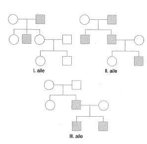 11.sinif-biyoloji-genetik-testleri-17.