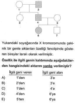 11.sinif-biyoloji-genetik-testleri-9.