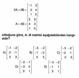 lys-matematik-matris-testleri-12.