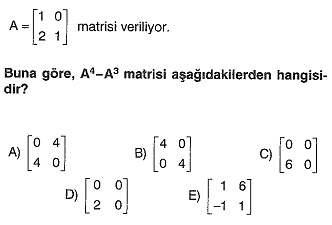 lys-matematik-matris-testleri-21.