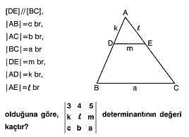 lys-matematik-matris-testleri-45.