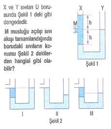 lys-fizik-madde-ozellikleri-testleri-91.