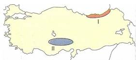 10-sinif-cografya-turkiyede-toprak-tipleri-ve-toprak-kullanimi-testleri-3-Optimized