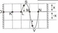 10.-sinif-fizik-dalgalar-testleri-15-Optimized