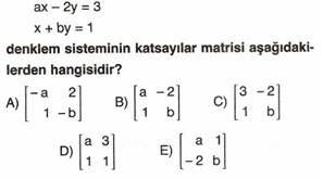 11.Sinif-Matematik-Dogrusal-Denklem-Sistemleri-Testleri-13-Optimized