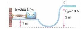11.Sinif-fizik-hareket-ve-kuvvet-testleri-13