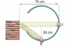 11.Sinif-fizik-hareket-ve-kuvvet-testleri-16