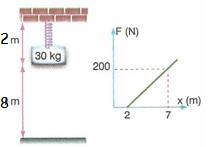 11.Sinif-fizik-hareket-ve-kuvvet-testleri-20