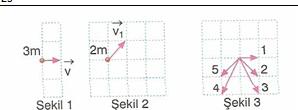 11.Sinif-fizik-hareket-ve-kuvvet-testleri-33