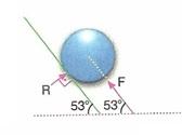 11.Sinif-fizik-hareket-ve-kuvvet-testleri-59