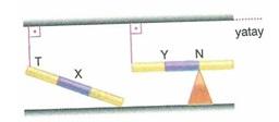 11.Sinif-fizik-hareket-ve-kuvvet-testleri-62