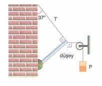 11.Sinif-fizik-hareket-ve-kuvvet-testleri-67