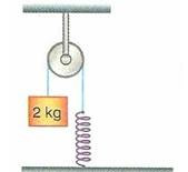 11.Sinif-fizik-hareket-ve-kuvvet-testleri-7