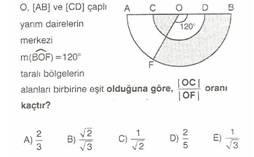 11.Sinif-geometri-dairede-alan-testleri-12-Optimized