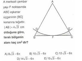 11.Sinif-geometri-dairede-alan-testleri-18-Optimized