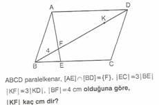 11.sinif-geometri-dikdortgen-testleri-121-Optimized