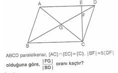11.sinif-geometri-paralel-kener-testleri-14-Optimized