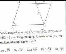 11.sinif-geometri-paralel-kener-testleri-16-Optimized