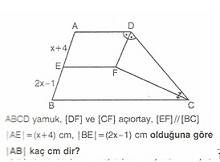 11.sinif-geometri-yamuk-testleri-10-Optimized