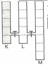 8.-Sinif-Fen-Ve-Teknoloji-Hareket-Ve-Kuvvet-Testleri-32-Optimized