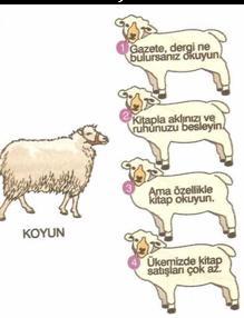 6.sinif-turkce-parcada-anlam-testleri-4