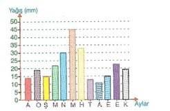 6.sinif-matematik-arastirma-sorusu-olusturma-ve-veri-olusturma-testleri-11.