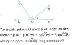 5.sinif-matematik-acilar-testleri-31.