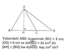 5.sinif-matematik-alan-olcme-testleri-10.
