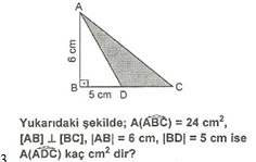 5.sinif-matematik-alan-olcme-testleri-13.