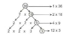 6-sinif-dogal-sayilarin-carpanlari-ve-katlari-1