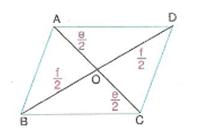 6-sinif-matematik-paralelkenarin-alanı-5