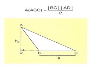 6-sinif-ucgenin-alani-4