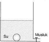 8-sinif-fen-bilimleri-basinc-test-4