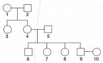 8-sinif-fen-bilimleri-kalitim-test-9