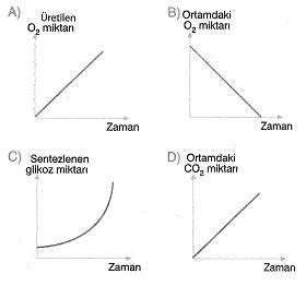 8-sinif-fen-bilimleri-canlilar-ve-enerji-1