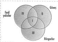 8-sinif-fen-bilimleri-canlilar-ve-enerji-cozumlu-18-optimized