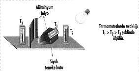 8-sinif-fen-bilimleri-canlilar-ve-enerji-cozumlu-19-optimized