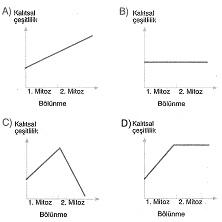 8-sinif-fen-bilimleri-hucre-bolunme-ve-kalitim-16