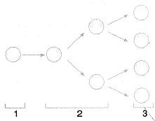 8-sinif-fen-bilimleri-hucre-bolunme-ve-kalitim-6