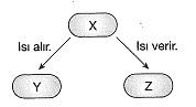 8-sinif-fen-bilimleri-isi-alisverisi-ve-sicaklik-degisimi-3