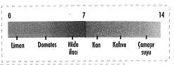 8-sinif-fen-bilimleri-maddenin-yapisi-ve-ozellikleri-cozumlu-18-optimized
